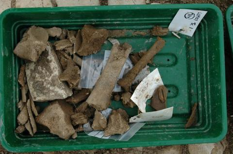 Tray of finds