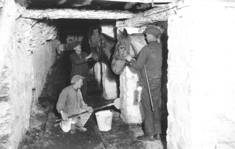 Underground stables, probably Penallta Colliery, c.1940.